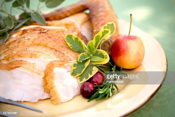 Christmas & Thanksgiving Food Plate, Roast Turkey Dinner