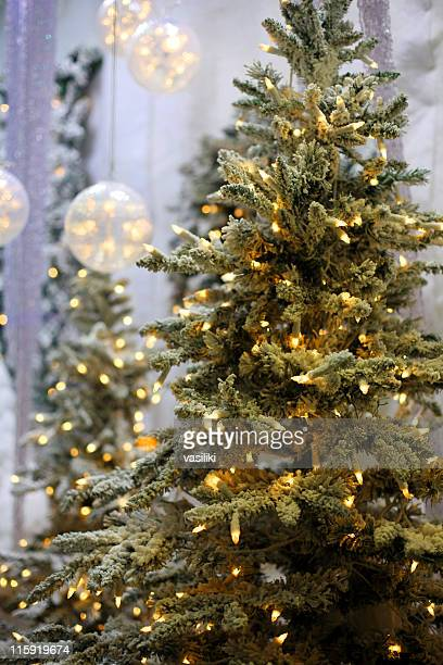 A Christmas tree adorned with white lights