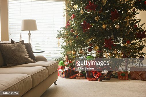Christmas Tree Living Room modern loft living room with potted blue spruce christmas tree