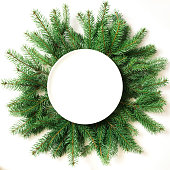 Creative layout made of christmas tree branches with empty plate on white background. Top view. Christmas concept.