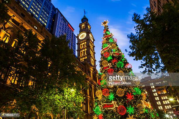 Christmas tree & clock tower in Martin Place