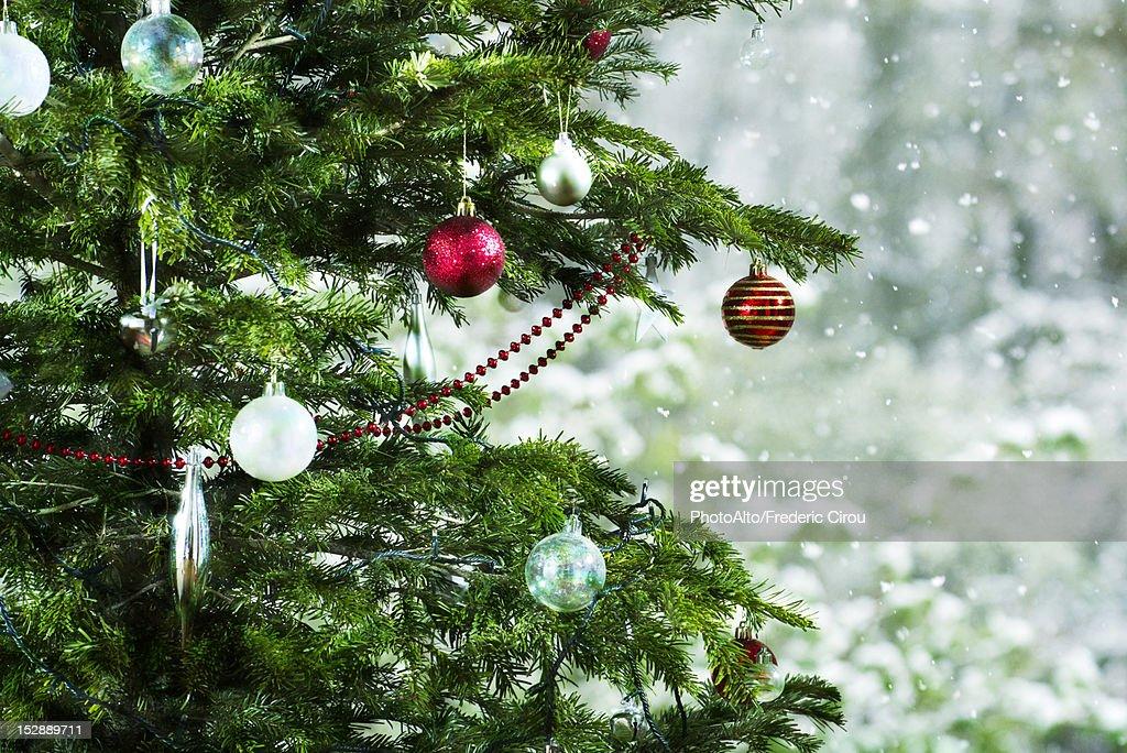 Christmas tree, close-up : Stock Photo