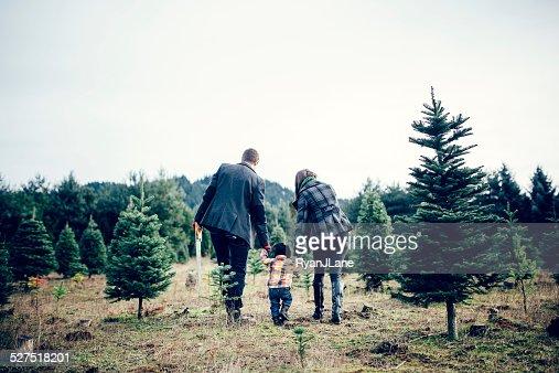 Árvore de Natal família na Quinta de árvores