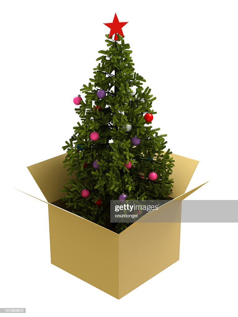 christmas tree in a box stock photo - Christmas Tree Boxes