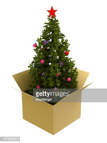 christmas tree in a box stock photo getty images - Christmas Tree In A Box