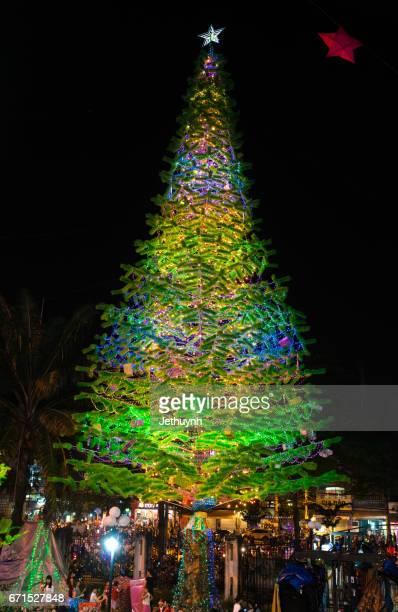 Ho Chi Minh City, Vietnam - December, 23, 2016 : christmas tree in Chirst Church district Binh Tan, Saigon