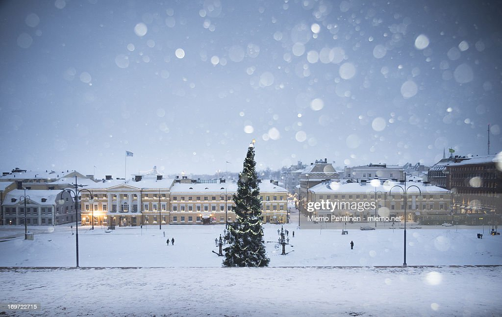A Christmas Tree In Helsinki During Snow Storm : Stock Photo