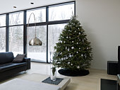 Christmas tree in living room