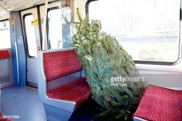 Christmas tree in public transportation