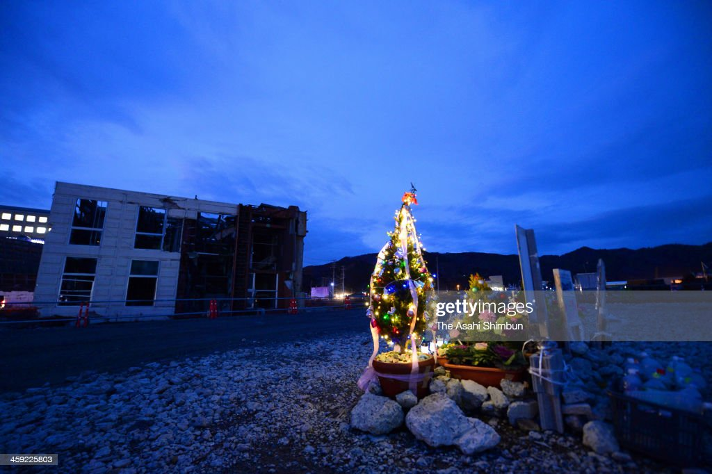 A Christmas tree is placed at the 77 Bank Onagawa branch used to stand on December 23, 2013 in Onagawa, Miyagi, Japan. The relatives and family members of the 12 bank officers who were washed away by the tsunami triggered by the magnitude 9.0 strong earthquake in 2011 placed the tree.