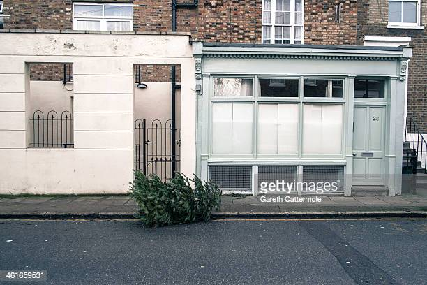 Christmas tree lies discarded on the pavement in Angel on January 8 2014 in London England In the lead up to Christmas a pine tree is the centre...