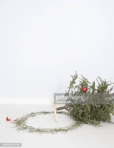 Christmas tree on floor beside broken ornament and loose pine needles