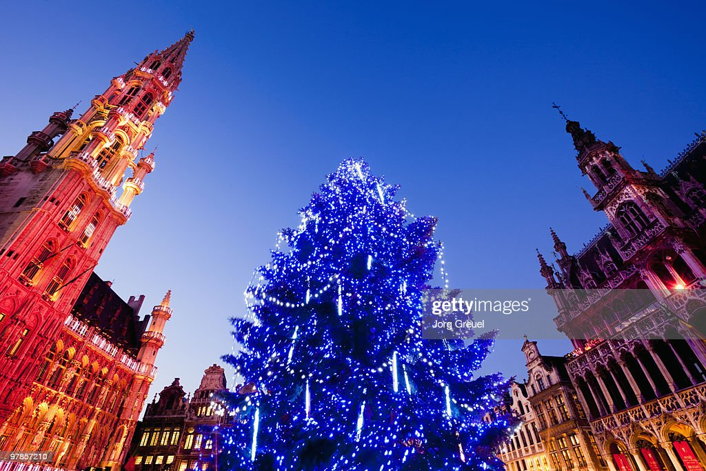 Christmas tree on Grand Place at dusk
