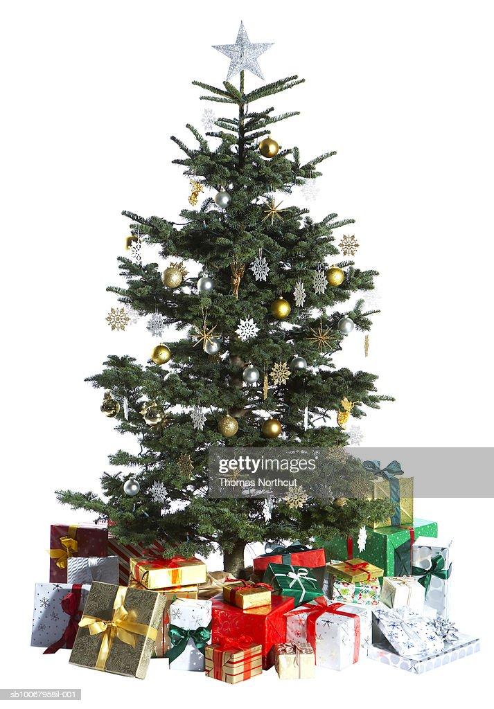 Christmas tree on white background : Stock Photo