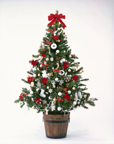 weihnachtsbaum stock fotos und bilder getty images. Black Bedroom Furniture Sets. Home Design Ideas