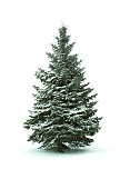 Christmas Tree - Isolated over White background