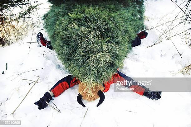 Christmas Tree Problems
