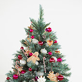 Christmas tree, studio shot