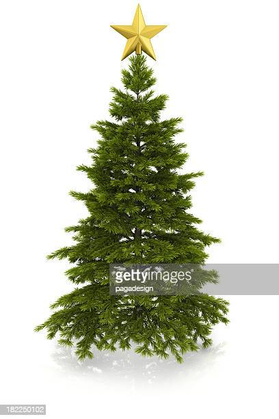christmas tree with gold star