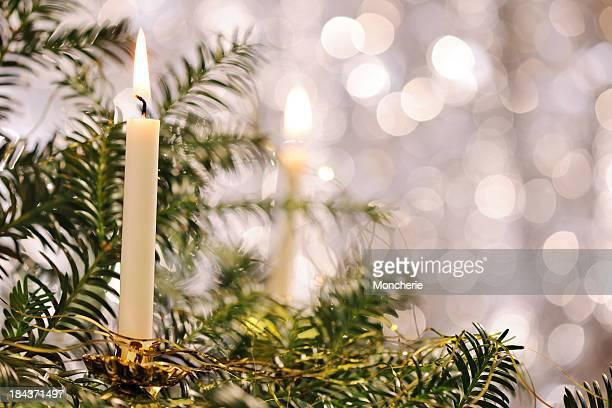 Christmas tree with illuminated background