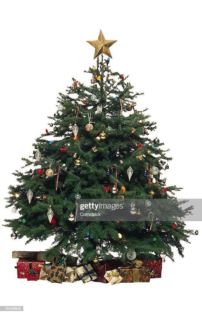 Christmas tree with presents : Stock Photo
