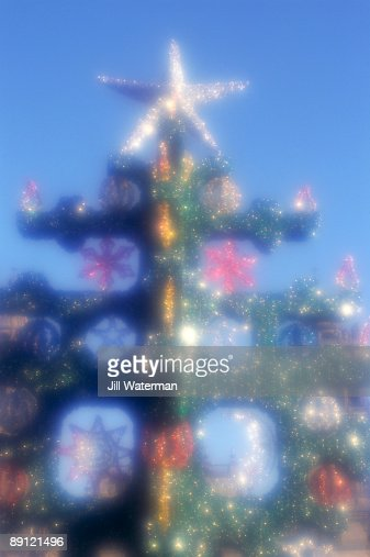Christmas tree with star : Stock Photo