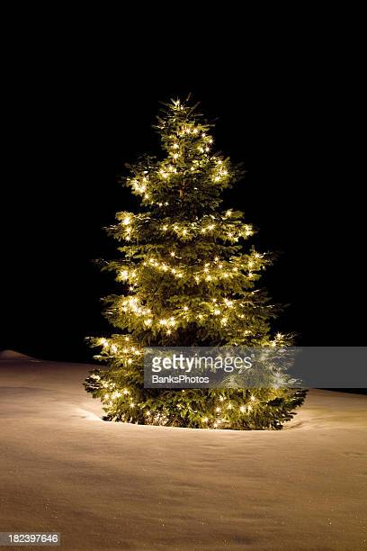 Christmas Tree with White Lights on Sparkling Snow Covered Slope