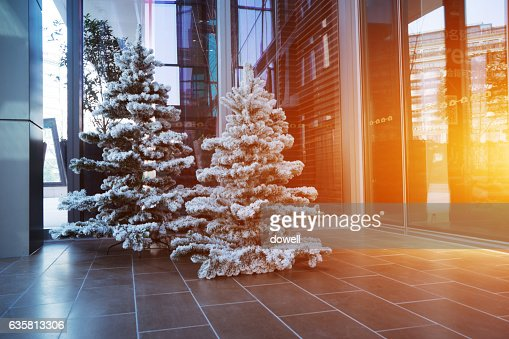 Christmas trees near door of modern Shopping mall : ストックフォト