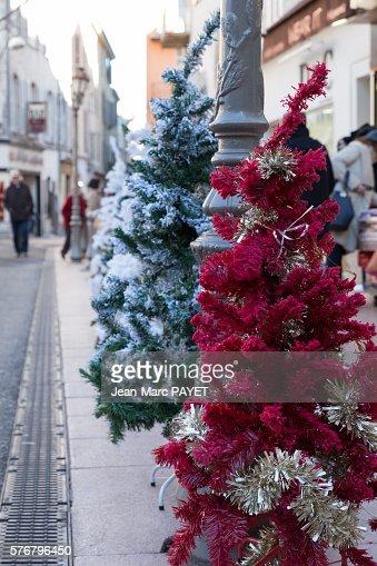 Christmas trees on the street