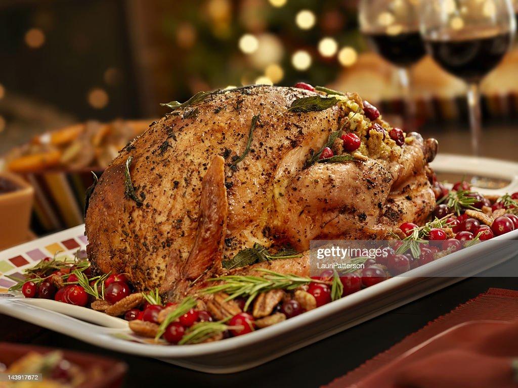 Christmas Turkey Dinner : Stock Photo