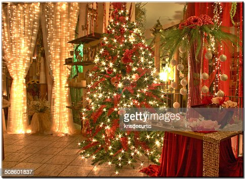 Christmas Twinkling : Foto de stock