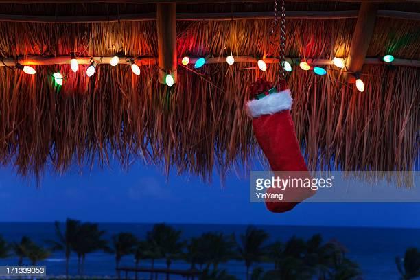 Christmas Vacation in The Tropical Caribbean Beach Hz