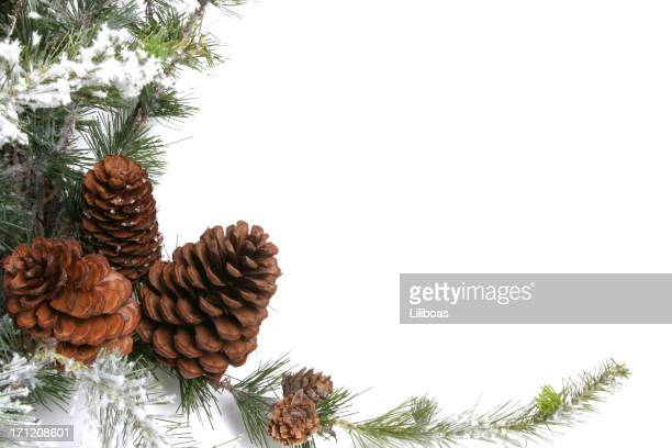 Christmas wreath with pine cones and snow isolated on white