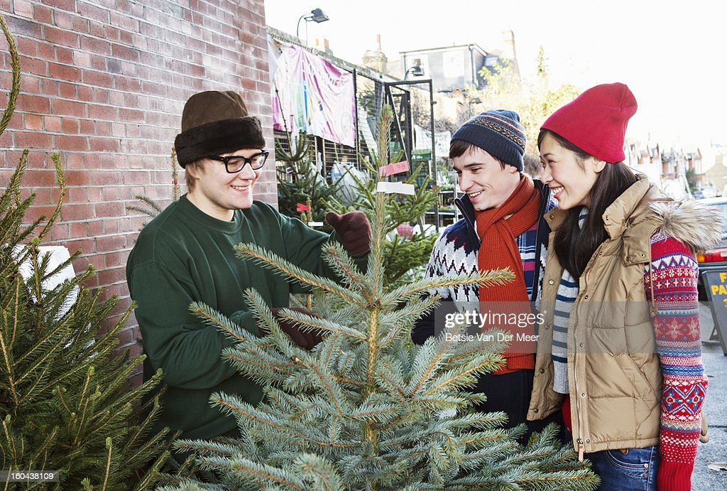 Christmastree salesman sells tree to couple. : Stock Photo