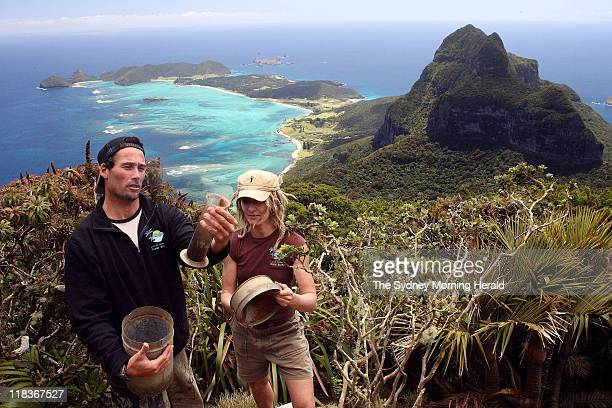 Christo Haselden a Ranger with the Lord Howe Island Board and Sue Bower Flora Management Officer stand atop Mt Gower on Lord Howe Island NSW The pair...