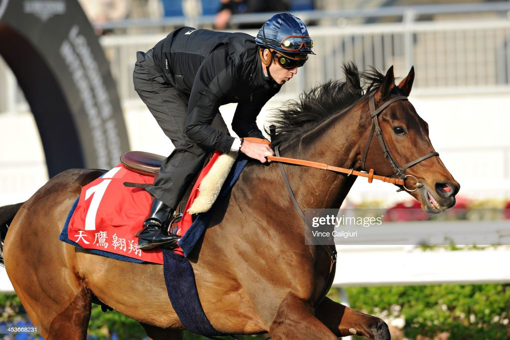 <a gi-track='captionPersonalityLinkClicked' href=/galleries/search?phrase=Christophe+Soumillon&family=editorial&specificpeople=453308 ng-click='$event.stopPropagation()'>Christophe Soumillon</a> Cirrus Des Aigles galloping on the turf track during a Hong Kong International Trackwork Session at Sha Tin racecourse on December 5, 2013 in Hong Kong, Hong Kong.