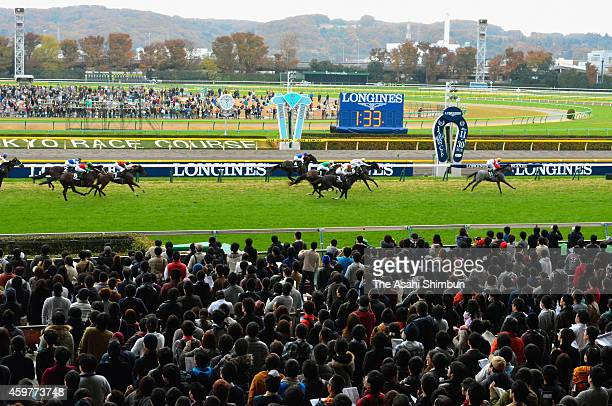 Christophe Soumillon riding Epiphaneia crosses the finishing line to win the 34th Japan Cup at Tokyo Racecourse on November 30 2014 in Fuchu Tokyo...