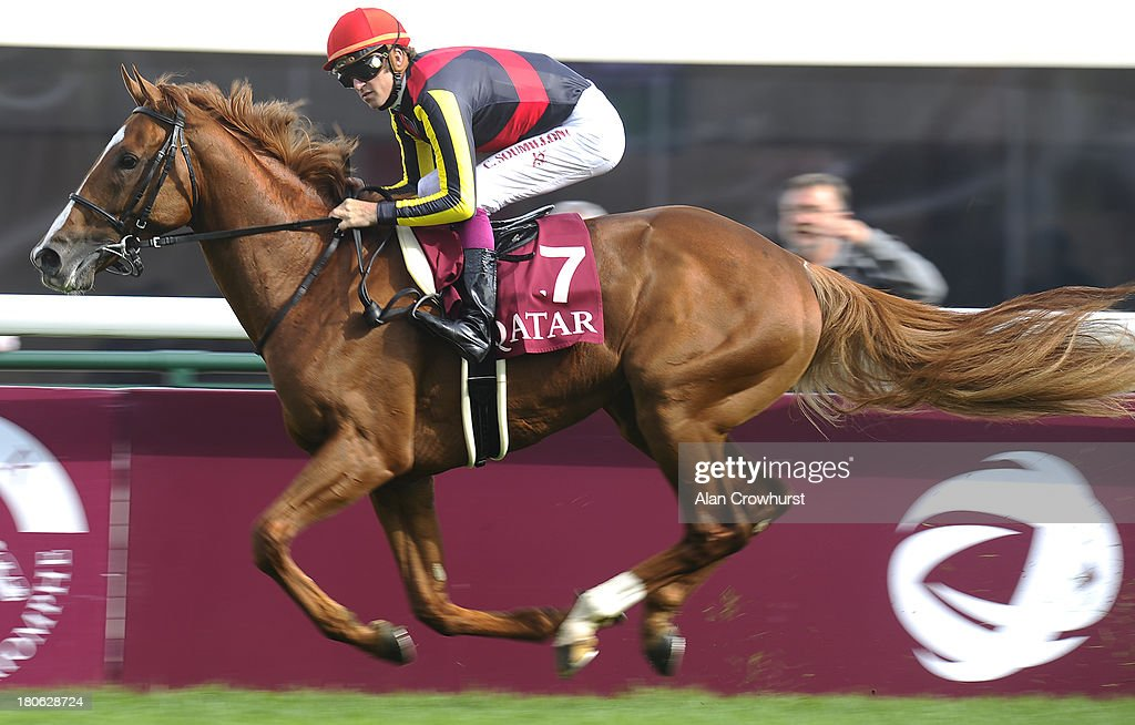 <a gi-track='captionPersonalityLinkClicked' href=/galleries/search?phrase=Christophe+Soumillon&family=editorial&specificpeople=453308 ng-click='$event.stopPropagation()'>Christophe Soumillon</a> riding Orfevre easily win The Qatar Prix Foy at Longchamp racecourse on September 15, 2013 in Paris, France.