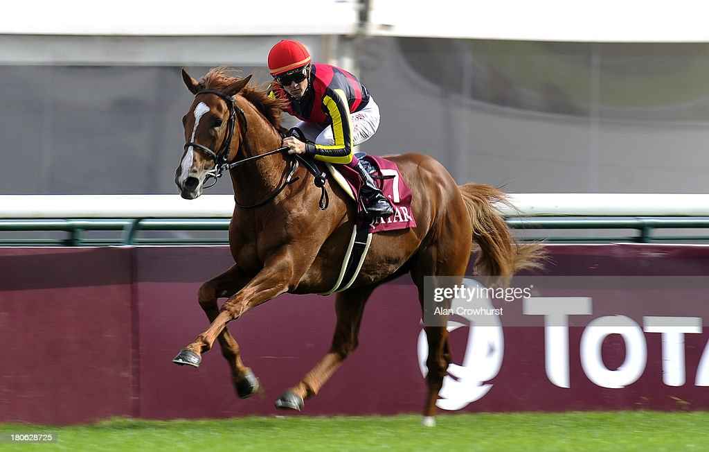 Christophe Soumillon riding Orfevre easily win The Qatar Prix Foy at Longchamp racecourse on September 15, 2013 in Paris, France.