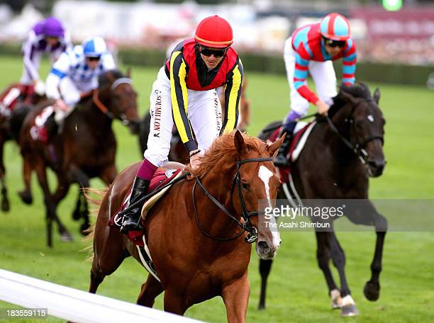 Christophe Soumillon riding Orfevre gallops after the Qatar Prix de l'Arc de Triomphe at Longchamp racecourse on October 06 2013 in Paris France
