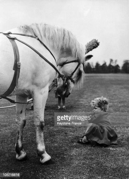 Christopher Sprickland And Samson The Pony In Aldershot In 1955