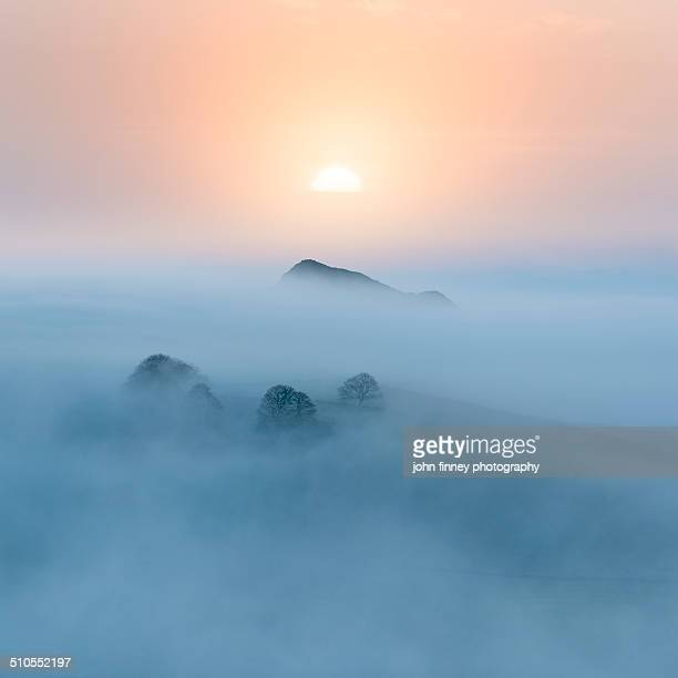 Chrome hill pastel sunrise