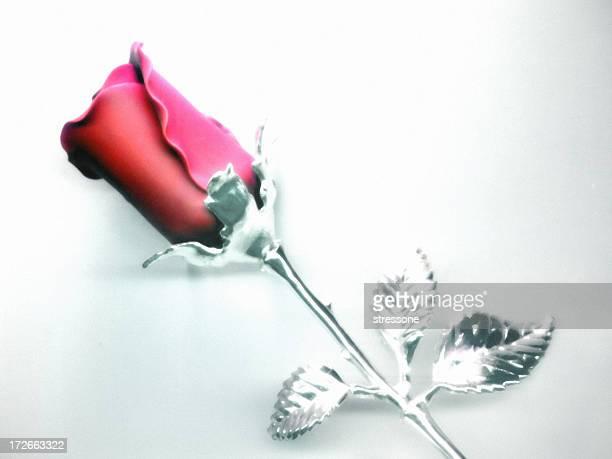 Chrome Rose - 2