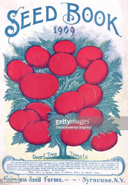 Chromolithographic advertising cover page from a Victorian seed catalog Syracuse New York 1909