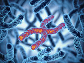Chromosome 3d rendering illustration