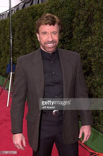 Chuck Norris during Stunt Awards