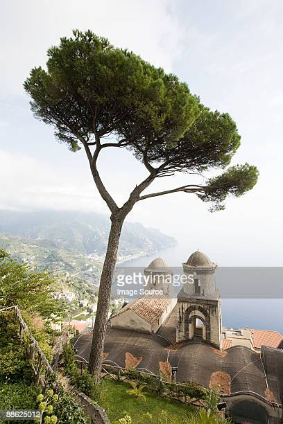 Church and tree in ravello