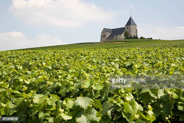 Church on Hill Surrounded by Vineyard