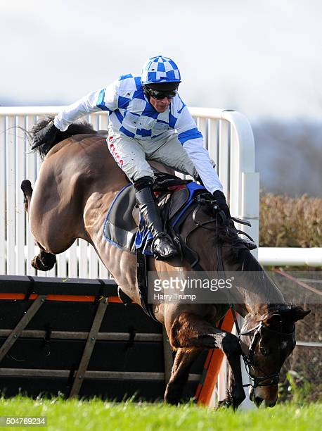 Churchtown Champ ridden by Harry Skelton just manages to stay on his mount whilst jumping the last before going onto win the Somerset Chamber of...