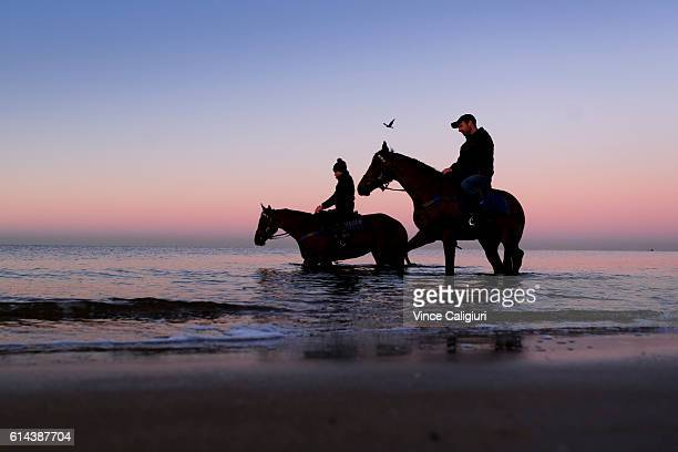 Ciaron Maher stabe horses Lucy Yeomans riding Jameka and Declan Maher riding Pemberley during beach work at Mordialloc beach ahead of tomorrows...